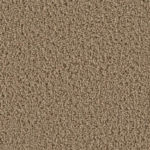 Oak Carpet Flooring
