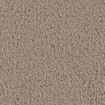 Slate Carpet Flooring
