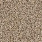 Splitrail Carpet Flooring