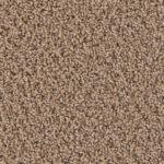One Solution - Palmetto Carpet Flooring